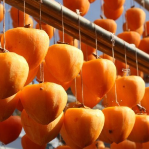 Essential Items for Persimmon Fruits